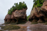 Large Flower Pot sea stacks and caves at low tide at Hopewell Rocks Bay of Fundy