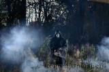249 Chainsaw in mist 2.jpg
