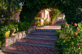 Tiled steps and tropical gardens at Hippocampe resort Oualidia Morocco
