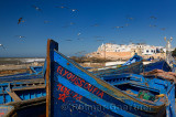 Blue fishing boats and seagulls with ramparts of Essaouira Morocco