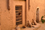 Sheep poking its head out a window in historic Kasbah Amerhidil in Skoura Morocco