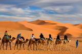 Tuareg Berber man leading a group of tourists on camels through the Erg Chebbi desert in Morocco