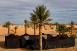 Berber tents and palm trees in sand at the edge of the desert in Khemlia Morocco