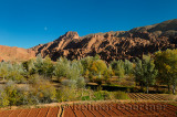 Limestone rock fingers poplar trees and cultivated fields with moon in Dades Gorge Morocco