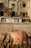 Raw sheep hides stacked up for processing in the tannery of Fes Morocco Chouara quarter