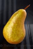 305 Pear.jpg