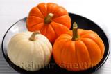 305 Pumpkins 1.jpg
