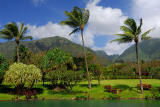 84 Maui Tropical Plantation 2.jpg
