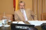 Comision 11M Garzon