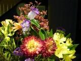 Fall Flower Cluster ~ November 15th
