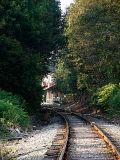 Walking the Tracks ~ September 10th