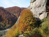 Targoviste - Rucar Valley