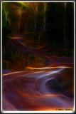 Elf path.jpg