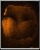 The-Cave frac moti.jpg