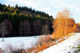 winter in Bruche valley