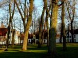 Bruges # 16