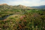 ostriconi river