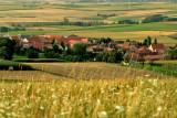 le village, en été
