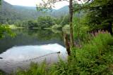 le lac de Retournemer (Vosges) #2