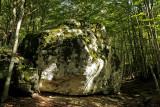 forest of Pietracamela