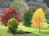 automne 22-10-05