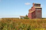 Naisberry SK Terre Bonne Farms Ltd Sept 2006