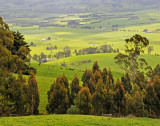 Beautiful Dairy Land in Yarragon, a Distance from Melbourne