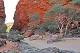 Lovely Red Rocks and Green Trees