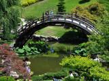 Lovely Bridge of Japanese Gardens