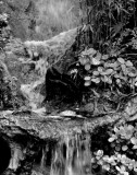 Final water flow
