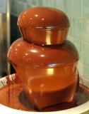 Wonderful Chocolate Fountain/Desserts!