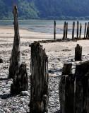 Remnants of Past Civilization! Juneau