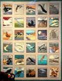 Quilt with Marine Themes at Aquarium