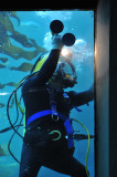 Diver on Tank-Cleanup Duty