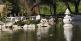 Lake of Reflected Fragrance