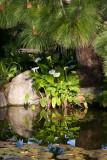 Adelaide Himeji Gardens, South Australia