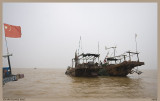 FISHING with 2 BAOTS in YELLOW RIVER DELTA