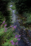 Le VALTIN.Just after the Pond L'etang des DAMES