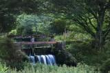 Le VALTIN..Outlet of the Pond Etang des Dames
