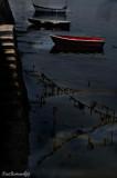 5.CAP COZ.The Boats