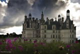 4.CHAMBORD .And the Rain,and the Flowers