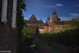 8.COLLONGES la ROUGE.Vineyard and Entry
