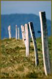 HONECK.Fence