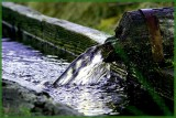 La BRESSE.VOSGES WATER