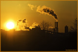 PAPERMILL in the SUNRISE