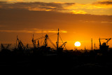 Sunset over Hastings fishing boats