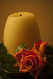 Candle and Rose 1