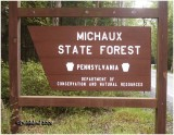 Michaux State Forest-Adams/Franklin Co, PA