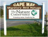 Cape May Migratory Bird Refuse-NJ