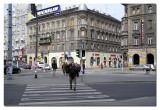 Budapest_30-4-2006 (25).jpg